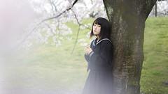 Slightly SAKURA (ai3310X) Tags: none carlzeiss ycontax sonnar t2885 portraits ポートレート 桜