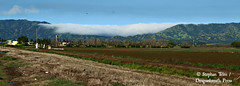 IMG_3022_Fog rolls through Berryessa Gap (sdttds) Tags: 365in2017 project365 pictureoftheday 365 2017 2017yip landscape yolocounty winters california coastrange fog mountains beauty 09apr2017 99365