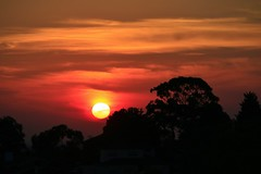 Autumn Red Gold Sunset (explored) (Greenstone Girl) Tags: red gold clouds melbourne sunset suburbs victoria australia
