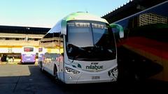 Buses Nilahue (Javier.Nilahue) Tags: buses nilahue irizar i6 390 busologos mercedes benz o500rsd terminal santiago