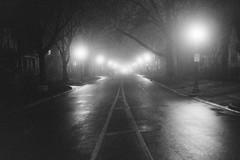untitled-12-Edit (dvlmnkillatron) Tags: selfdeveloped 35mm analog bw canonae1 film ilfordhp5 hp5 nightphotography pushed 3200 urbana fog road perspective