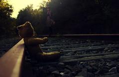 Teddy called me (stefaniebst) Tags: abandoned childhood composition toy teddy railway compo story souvenir abandon forgotten memory teddybear rails tale jouet dreamscape peluche urbex oubli abandonn conte enfance cuddytoy