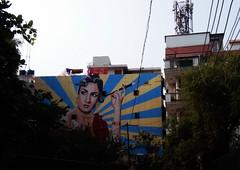 2014-10-22 14.12.25 (tomdreesen) Tags: street new travel india art graffiti photo delhi