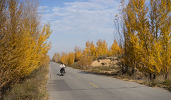 China 8 - Baotou to Beijing