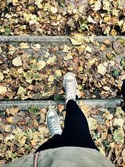 In autunno, non andare dai gioiellieri a vedere loro.. vai nei parchi! (teoremalibero) Tags: life red orange verde green nature yellow foglie war strada emotion natura giallo autunno rosso arancio vita scarpe legno emozione iphone5s