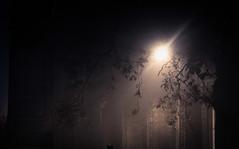 IMG_1998 (hexadb) Tags: street family mist church fog dark october dorset bridport reos 2014 1585 60d