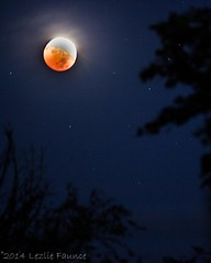 10-8-2014 Blood Moon Lunar Eclipse 024 (lezlievachon) Tags: