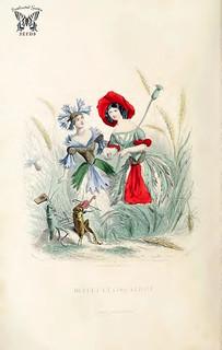 Bluet, and Coquelicot. Blue cornflower (Cyanus segetum) and Red cornflower (Poppy, Papaver rhoeas). Les fleurs animées, vol. 2 (1867)
