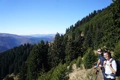 Aproape de vârful Muntele Roșu