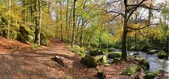 La riviere d'Argent - Huelgoat(4) (francois.pouzet999) Tags: autumn france bretagne forests hdr finistere huelgoat 2013 nikond600 panoramaphotomerge