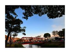 Worldwide Photo Walk 2014 (V) (W Gaspar) Tags: city bridge cidade brazil urban tree minasgerais rio brasil river scott landscape nikon minas sigma paisagem ponte photowalk urbana 1020mm árvore paraibuna kelby juizdefora flickrphotowalk d5100 wgaspar wwph2014