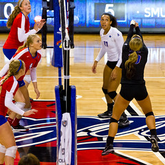20141015_19142501-Edit.jpg (Les_Stockton) Tags: golden university hurricane volleyball tulsa tu smu mustangs universityoftulsa tulsagoldenhurricane smumustangs tugoldenhurricane