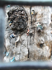 LONDON 1730 (RANCHO COCOA) Tags: wood uk england tree london garden elf trunk kensington kensingtongardens carvings sculpted elves theelfinoak