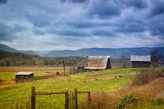 Rural Virginia (Michael Kline) Tags: autumn fall virginia october 2014