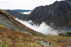 (GenJapan1986) Tags: travel mountain japan landscape   nagano  25mm 2014    nikond600 zf2  distagont225