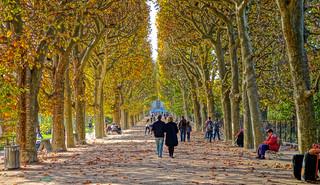 Couloir de l'automne
