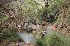 _MG_0960 (liem.ionetour) Tags: travel beautiful landscape nice asia tour du vietnam tay viet mai re gia dep sapa nam bac chau ione maichau dulich mocchau taybac hapdan ionetour