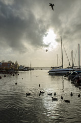 Son marina (Ingunn Eriksen) Tags: vestby akershus norway