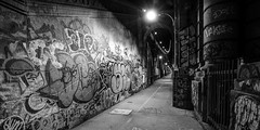 Manhattan Bridge (dansshots) Tags: nyc newyorkcity bridge blackandwhite newyork graffiti nightshot manhattan manhattanbridge bigapple bnw graffitiart newyorkatnight thebigapple nycatnight dansshots