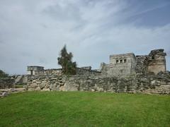 P1020375 (ferenc.puskas81) Tags: america mexico temple ruins riviera maya god central july tulum dio castillo 2010 centrale messico descending luglio tempio discendente