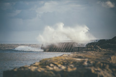 Wave hitting Porthcawl Pier (Courtesy of Hurrican Gonzalo) 13 (Tim Bow Photography) Tags: uk sea lighthouse seascape storm water wales landscape pier dof fishermen wind britain hurricane windy stormy depthoffield storms porthcawl 2014 runforcover timboss81 timbowphotography hurricanegonzalo largewaveshitalighthouse wavesstormseries
