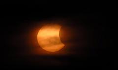 Solar Eclipse (BlueRidgeKitties) Tags: sun northcarolina blueridgeparkway westernnorthcarolina partialsolareclipse ravenrocksoverlook bwnd110 canonpowershotsx40hs