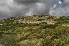 Storm cloud over Hartland Tor K3__3871.jpg (screwdriver222) Tags: nationalpark pentax devon moors tor moor dartmoor moorland k3 postbridge tamron2875f28xrdi hartlandtor postbridgeaudiowalk