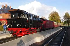 IMGP6323 (Steve Guess) Tags: train germany deutschland d railway steam gauge narrow hsb harzer schmalspurbahnen selketalbahn