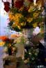 VICHY, VITRINE FLORALE (Gilles Poyet photographies) Tags: fleurs allier soe vichy auvergne bouquets vitrine fleuriste autofocus aplusphoto compositionflorale artofimages rememberthatmomentlevel1 rememberthatmomentlevel2 arcadesdevichy
