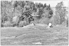 Spring Day (Xerethra) Tags: 35mm geotagged spring nikon europe sweden candid may sverige scandinavia maj vår järfälla 2013 görväln stockholmslän nikond80 dikartorp bwsvartvit snutenvägen snutenvägenjärfällastockholmslänsverige