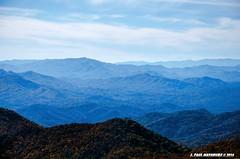 Blue Ridge Parkway (Paul's Captures (paul-mashburn.artistwebsites.com)) Tags: fallleaves leaves leaf fallcolor vista blueridgeparkway mountainrange beechleaves beechleaf bluemountainvista
