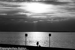 Sunset walk (pbr53) Tags: southendonsea england unitedkingdom gb dogwalker sunset