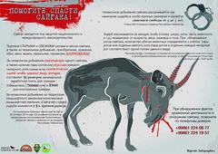 Print (majesticinfographics) Tags: nature saiga extincting animals