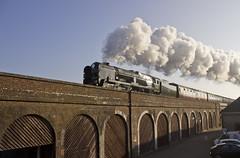 WC no.34046 'Braunton' (alts1985) Tags: wc no34046 braunton bob no34052 lord dowding the royal wessex main line steam train rytc shorehambysea 080417