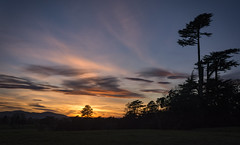 Sunset over Croome (cliveg004) Tags: croome croomepark worcestershire sunset clouds sky trees silhouettes malvernhills nikon d5200 1685mm nt
