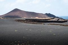 Lanzarote (Rainer ❏) Tags: lavasand krater natursteinmauer meer atlantic lanzarote kanaren spanien color rainer❏ ngc explore