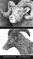 www.chrisfrancz.com (Chris Francz) Tags: art chrisfrancz ballpointpenart drawings sketchbook sketches sketchbookpages illustrations chrisfranczart
