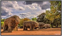 Toros de Guisando Ávila (Jose Roldan Garcia) Tags: paisaje tiemblo ávila historia toros aire nubes naturaleza luz libre españa esculturas piedras granito gredos colores cielo