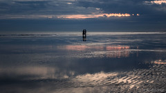 Strangers on the shore (Sue MacCallum-Stewart) Tags: lowtide brighton sunset silhouette people fingers coast seascape sand