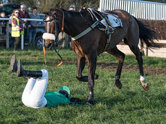 Could have gone so awfully wrong - Luckily both horse & rider walked away (Steve Barowik) Tags: yorkraces racecourse grandstand horse jockey trainer groom cropframe saddle plate whip hunter chaser hound pointtopoint point2point stevebarowik barowik 70200mmf28vrii jorvik ebor eboracum jump fence hurdle canter hack sbofls26 nikond500 quantumentanglement wonderfulworld unlimitedphotos flickrelite dx badsworthbramhammoor hunt askhambryan