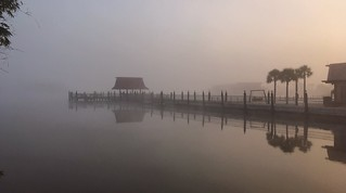 Dock in the Fog