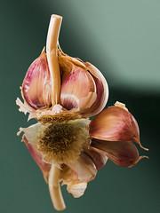PXL_3457_Garlic-3 (noel_upfield1) Tags: garlic cooking closeup detail pixlbypixl noelupfield