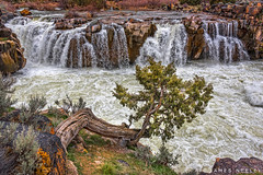 Caldron Linn (James Neeley) Tags: chaldronlinn snakeriver idaho landscape jamesneeley
