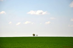 Simple nature (FleurdeLotus28) Tags: nature campagne prairie countryside champ landscape land simple minimalism minimalisme field sky ciel tree arbre green vert eureetloir spring printemps nikon