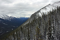 Cold Flight Down (JB by the Sea) Tags: canada rockies alberta banff rockymountains sulphurmountain banffnationalpark canadianrockies banffgondola september2014