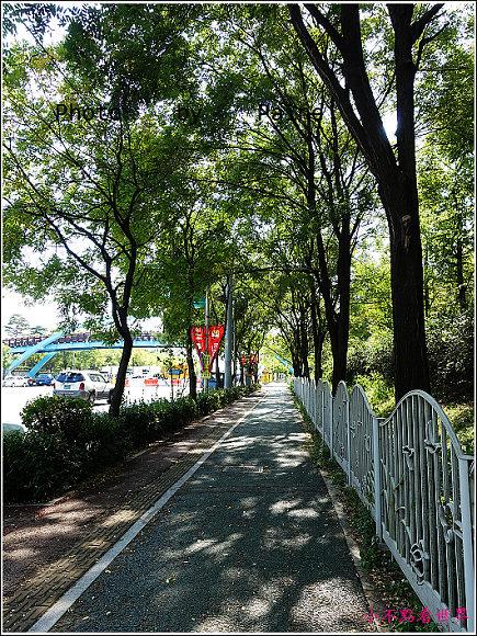 首爾 天空公園 (1).JPG