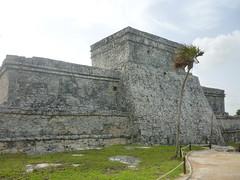P1020393 (ferenc.puskas81) Tags: america mexico ruins riviera maya central july tulum castillo 2010 centrale messico luglio