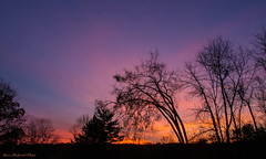 Morning Praise To GOD_11136 (smack53) Tags: morning autumn trees sky fall clouds canon newjersey silhouettes powershot paintedsky g12 westmilford smack53