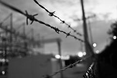 Protection (Phil Roeder) Tags: leica blackandwhite fence security barbedwire leicax2