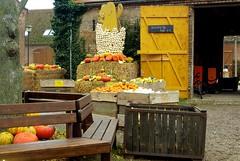 2014-10-20 Kremmen 03 (dks-spezial) Tags: brandenburg oberhavel scheunenviertel kremmen